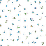 Delicate background. Small  floral. Simple flowers on a white background Royalty Free Stock Photo
