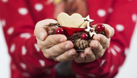 Delicate beautiful hands of a girl hold bright tasty sweet Christmas cookies royalty free stock image