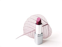 Delicate beauty 2. Lipstick and leaf skeleton Royalty Free Stock Photo