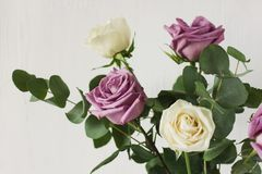 Delicate bouquet of light purple and white roses and eucaliptus stock photography