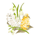 Delicate bouquet Stock Photography