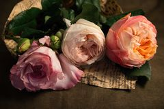 A delicate bouquet of pale pink roses. Bouquet of  delicate pale pink roses wrapped on the newspaper Stock Images