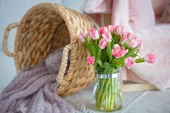 Delicate bouquet of pink tulips royalty free stock photos