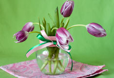 Delicate bouquet of purple tulips in a transparent vase Stock Photos