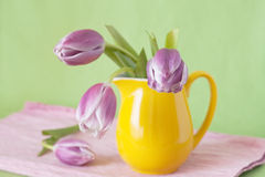 Delicate bouquet of purple tulips in a yellow jug Stock Photo