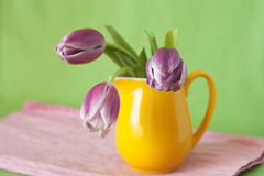 Delicate bouquet of purple tulips in a yellow jug Royalty Free Stock Image