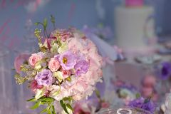 Delicate bouquet of roses Royalty Free Stock Image