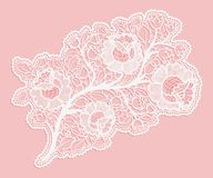 Delicate bouquet of roses on a pink background. Lace a single element. Royalty Free Stock Image