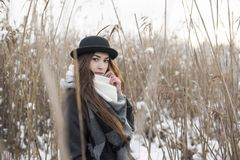 Delicate brunette girl in winter scenery among withered high grass. Stylish bowler hat and scarf. Everything cover by snow royalty free stock photos