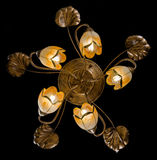 Delicate chandelier of flower lamps isolated on black. Chandelier for interior of the living room Royalty Free Stock Photography