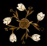 Delicate chandelier of flower lamps isolated on black. Chandelier for interior of the living room Stock Photography