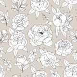 Delicate decorative seamless pattern with peonies Stock Images