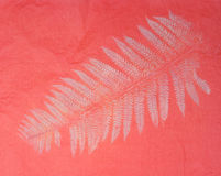 Delicate Fern Print on Textured Paper. Background Texture of a Delicate Fern Leaf, Frond, in White on Coral Pink  Textured Paper. Original Print Stock Photo