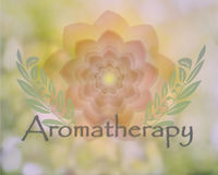 Delicate floral Aromatherapy design. Aromatherapy design with soft colors flowers and leaves in natural background Stock Images