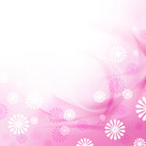 Delicate floral background Royalty Free Stock Photo
