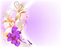 Delicate floral background Royalty Free Stock Photos