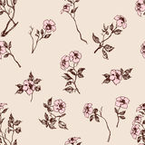 Delicate floral pattern Royalty Free Stock Photos