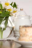Delicate flower in glass vase on wooden table Stock Images