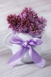 Delicate flowers of lilac in a white jug with a bow Stock Photography