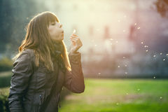 Delicate and fragile girl, sweet hope woman and nature. Blowing a dandelion. Delicate and fragile girl, sweet woman and nature. Romantic sunset. Profile Royalty Free Stock Photo