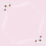 Delicate frame with orchid flowers on pink Royalty Free Stock Photography
