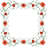Delicate frame with red poppies isolated on white Stock Image