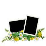 Delicate frame for three photos with flowers Royalty Free Stock Images