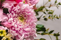 Delicate fresh bouquet of fresh flowers with a pink aster. Royalty Free Stock Photos