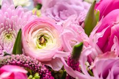 Delicate fresh bouquet of fresh flowers with pink Ranunculus. Background for birthday gifts Stock Photos