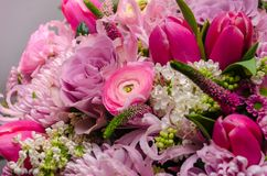 Delicate fresh bouquet of fresh flowers with pink Ranunculus, ro. Se, astra and chrysanthemum. Background for birthday gifts Stock Image