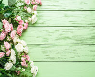 Delicate fresh roses on the green background. Stock Photo