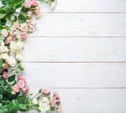 Delicate fresh roses on a white wooden background. Royalty Free Stock Photography