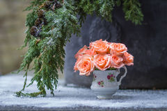 Delicate gentle bouquet of roses in the snow. December month. Fir tree branch and delicate bouquet of roses in the snow Stock Photo
