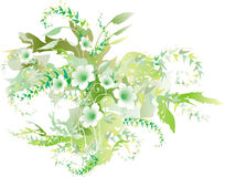 Delicate green flowers. Delicate green floral background. (Illustration Stock Photos