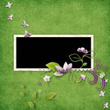 Delicate green frame Royalty Free Stock Photos