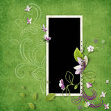 Delicate green frame Royalty Free Stock Photo