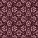 Delicate lace seamless floral pattern Stock Images