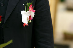 Delicate lily boutunniere buttoned to the black jacket.  Royalty Free Stock Images