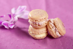 Delicate macarons Royalty Free Stock Image