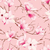Delicate magnolia flowers pink seamless vector pattern Royalty Free Stock Photography