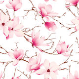 Delicate magnolia flowers seamless vector pattern Royalty Free Stock Images