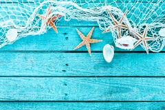 Delicate marine border of net, shells and starfish Royalty Free Stock Images