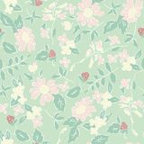 Delicate pattern in small flower. Shabby chic Royalty Free Stock Photos