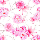 Delicate peonies and camellia floral seamless vector print Royalty Free Stock Photography
