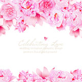 Delicate peonies and camellia vector wedding design Royalty Free Stock Photos