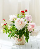 Delicate peonies in a water can stock photography