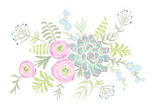 Delicate pink Ranunculus succulents herb field flower. Vintage postcard. Traditional embroidery floral pattern.. Vector folk fashion ornament white background Royalty Free Stock Image