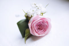 Delicate pink rose small bouquet for buttonhole used for groom and wedding guests positioned against a white background Stock Photography
