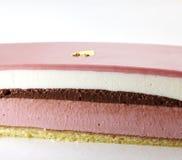 Delicate raspberry Chocolate cake. Shot in studio Stock Image