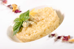 Delicate risotto with cheese Royalty Free Stock Photo